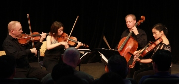 String Quartet, 2 violinists, a viola player and a cellist